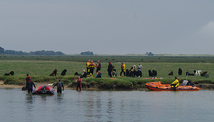 The inshore lifeboat with owners and dogs on the marsh opposite the quay, 12/6/16