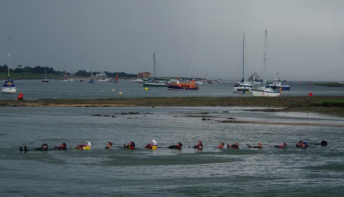 Kira the newfoundland pulls 14 people to shore, 12/6/16